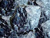 Activated Carbon manufactured from bituminous coal